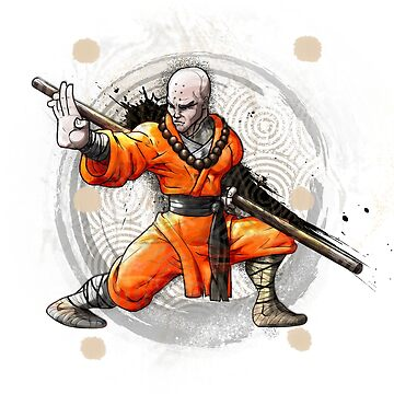 Fighting Kung Fu Shaolin Monk  by wademcm