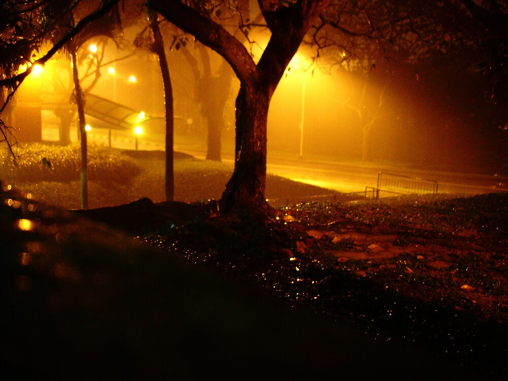 Its Raining Light! by Deepak Pitta