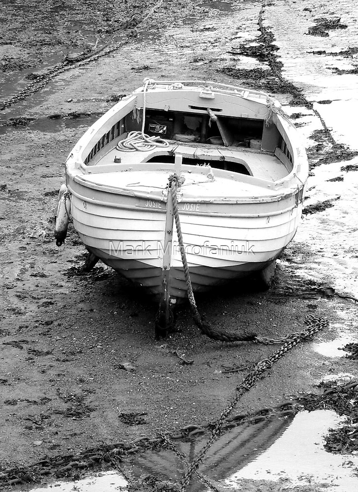 Low tide Josie by Mark Mitrofaniuk