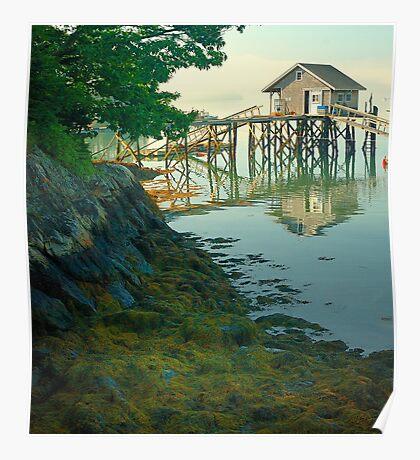 Fisherman's shack and vegetation, Coast of Maine Poster
