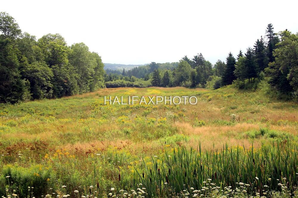 Lorne , Nova Scotia CANADA by HALIFAXPHOTO