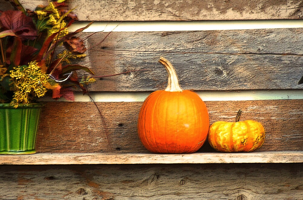 Autumn on a Shelf by Judi Taylor
