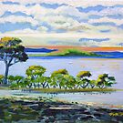 Wellington Point Mangroves Brisbane Queensland  by Virginia McGowan