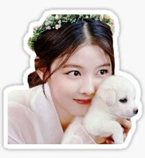 KIM YOO-JUNG LOVE IN THE MOONLIGHT PUPPY  Sticker