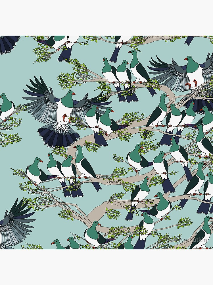 Kereru on turquoise sky - pale branches by CopperCatkin