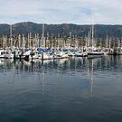 The Marina at Santa Barbara by Jan  Wall