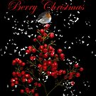 Berry Christmas by Catherine Hamilton-Veal  ©