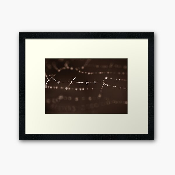 Humankind has not woven the web of life. We are but one thread within it.... Framed Art Print