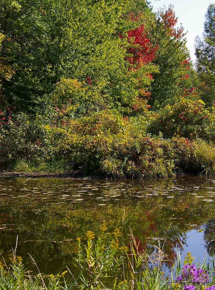 Holland Marsh by Larry Llewellyn