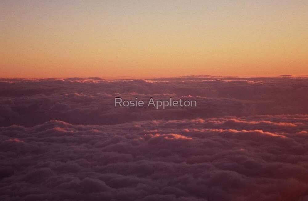 Dawns new light   by Rosie Appleton