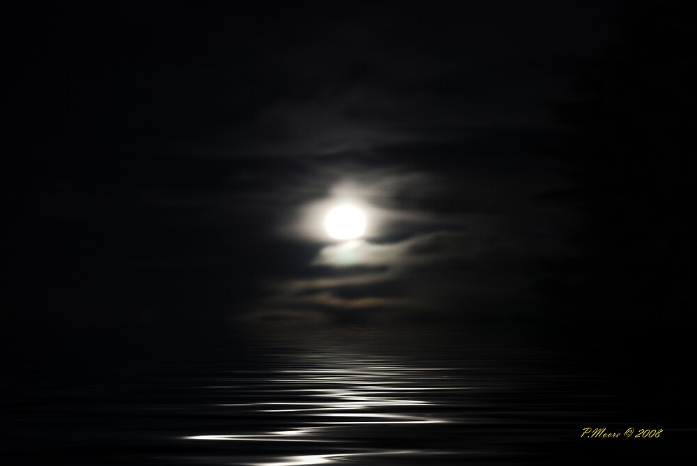 Moonlight Delight by Pat Moore