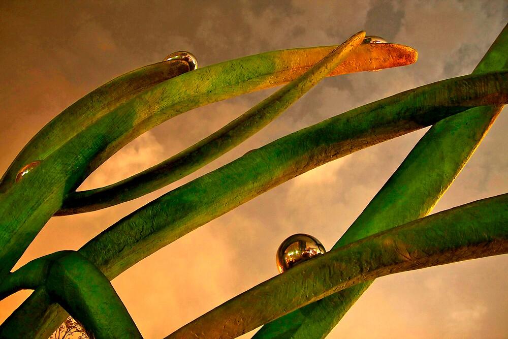 Modern Grass by Jeff Harris
