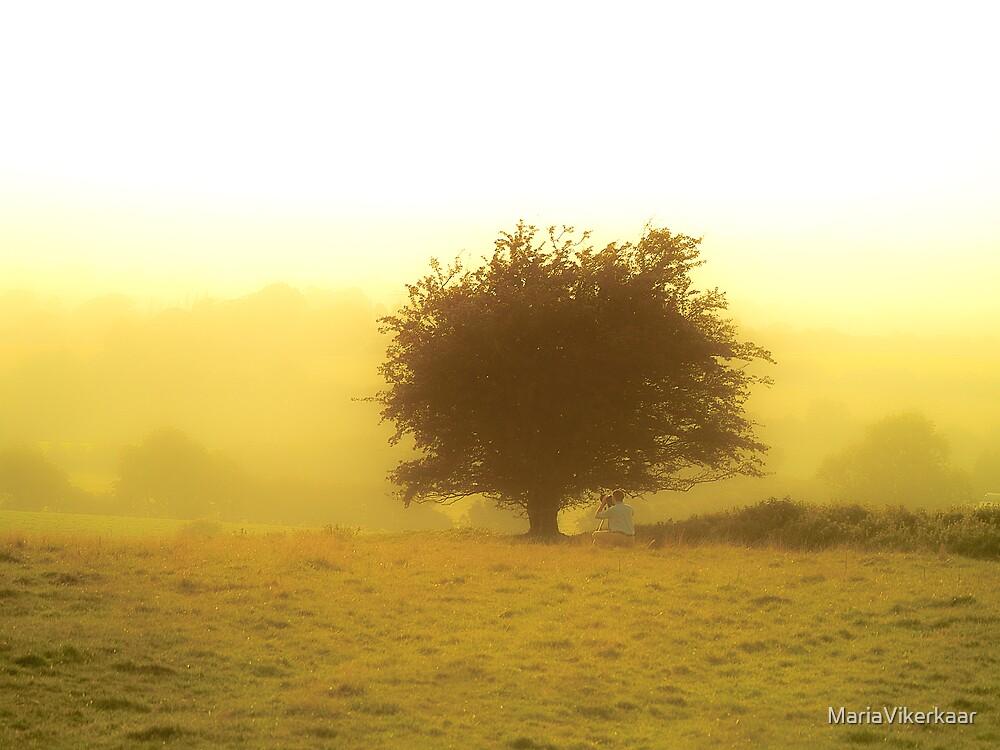 Misty Sunset by MariaVikerkaar