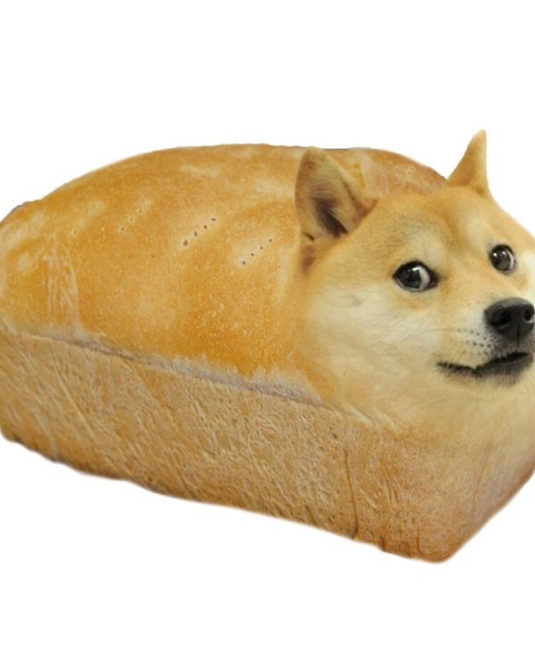 Doge / Doge Plushie Hashtag Collectibles / Learn about the ...