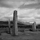 Standing Stones - Machrie Moor Arran by Doug Cook