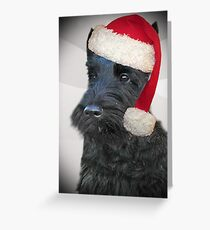 Scottish Terrier Christmas Art, Apparel, Gifts and Cards Greeting Card