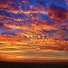 October Dawn by AnneDB