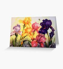 Glorious Irises Greeting Card