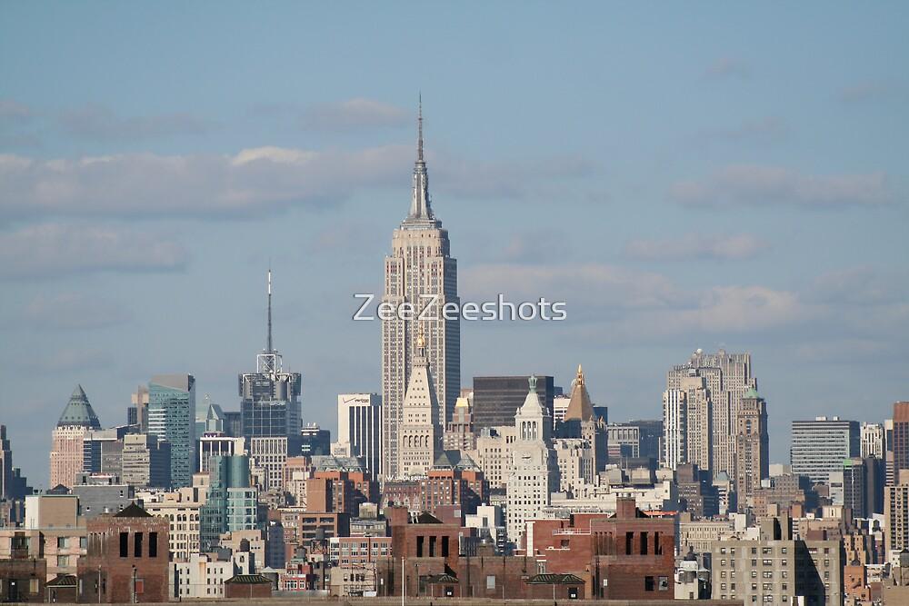 New York City Skyline by ZeeZeeshots