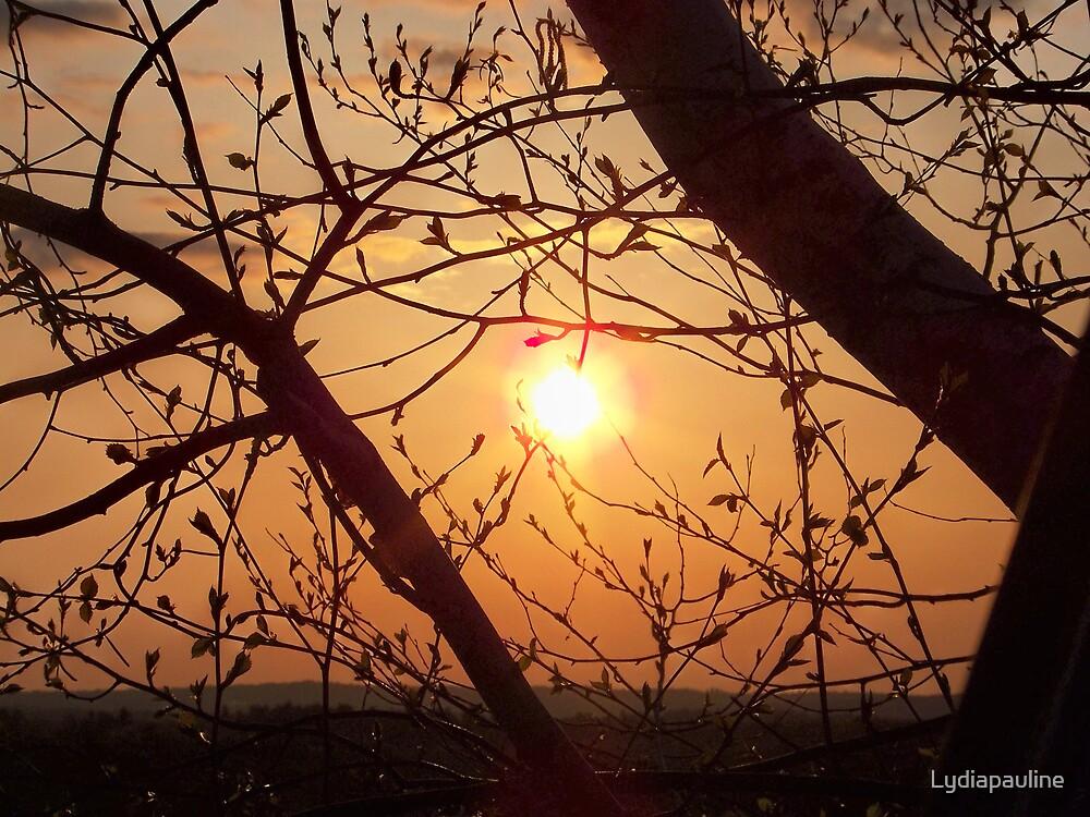 Windham Morning by Lydiapauline