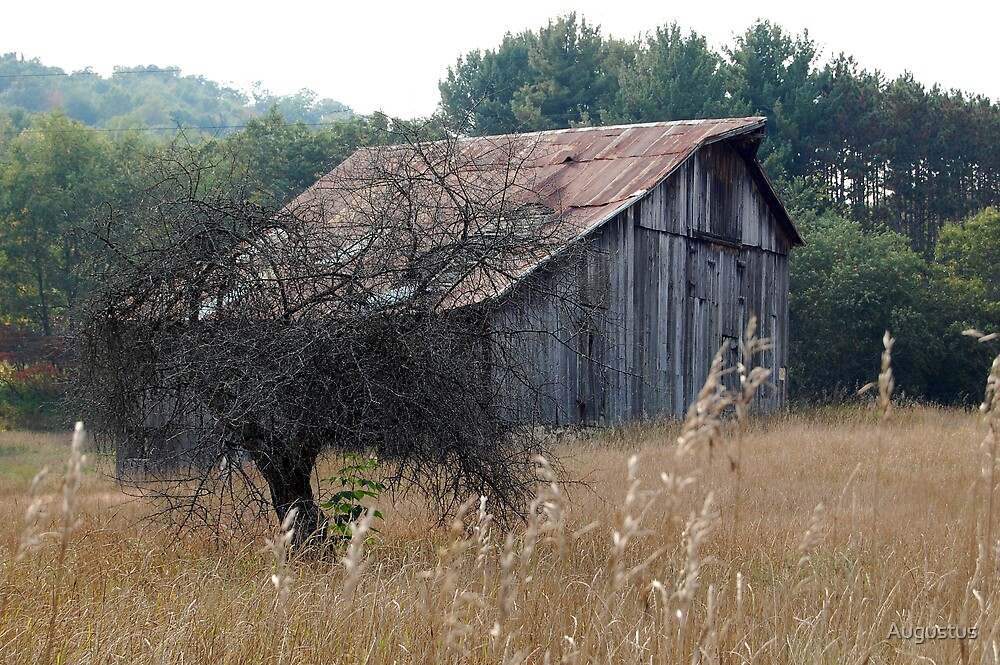 Weathered Barn by Augustus