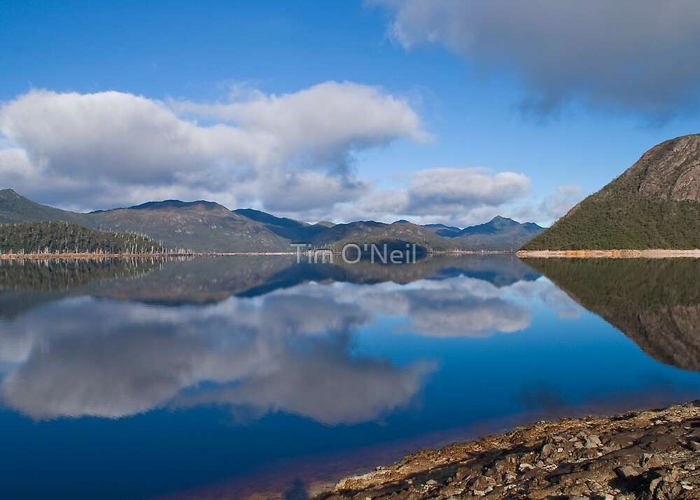 Double Vision by Tim O'Neil