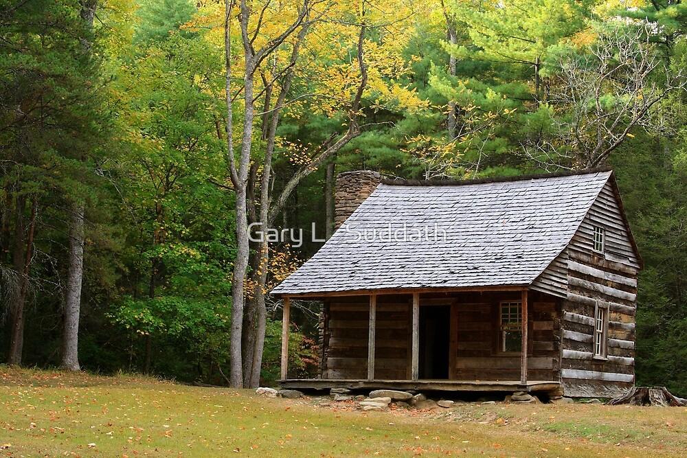 Appalachian Autumn   by Gary L   Suddath