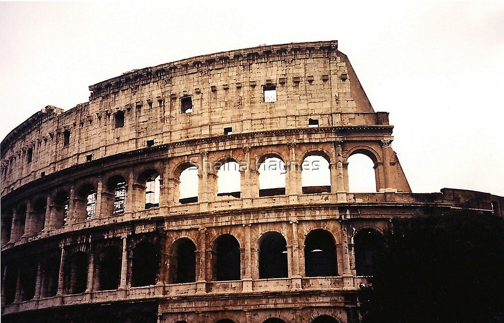 The Coliseum  by Shaina Haynes