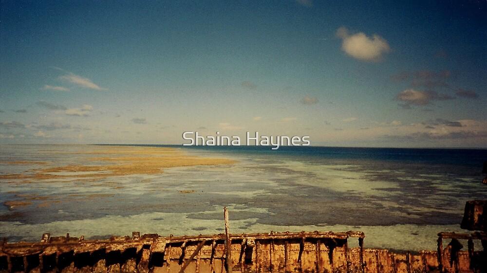 Lost at Sea by Shaina Haynes