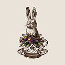 Rabbit in a Teacup   Vintage Rabbits   Vintage Tea Cups   Bunny Rabbits   Bunnies   Hares    by EclecticAtHeART