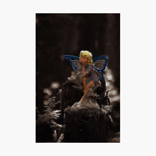 Woodland Fairy Photographic Print
