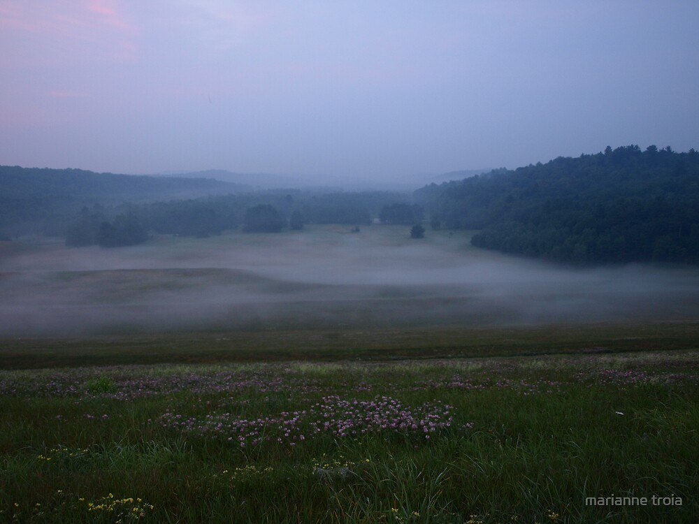 morning fog in the valley by marianne troia