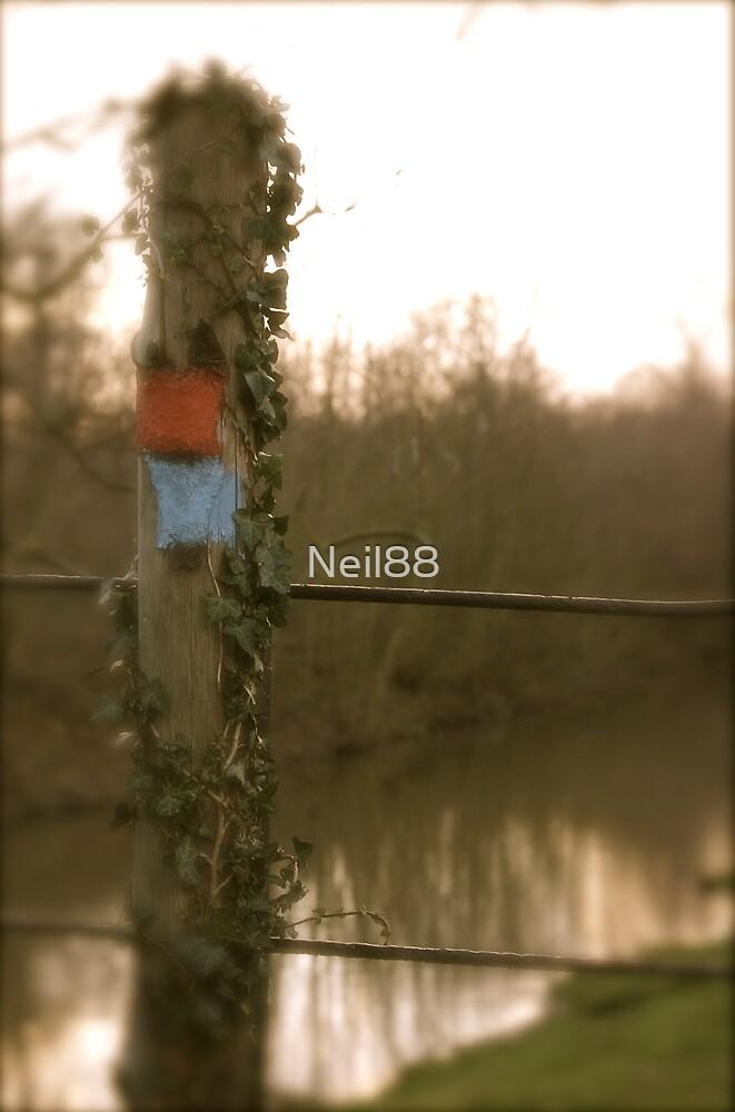 The Walk by Neil MacPhail