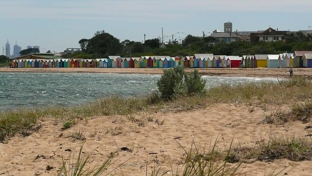 Bathing Huts at Brighton Beach by tallboy