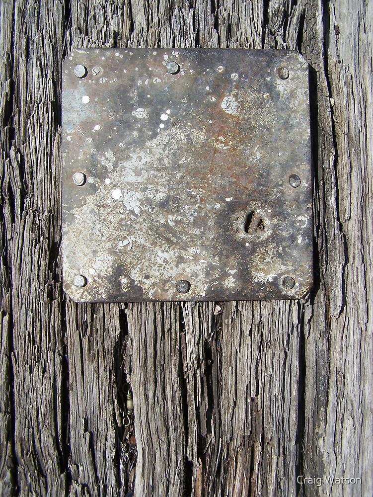 Nine Nails Plus One Hole by Craig Watson