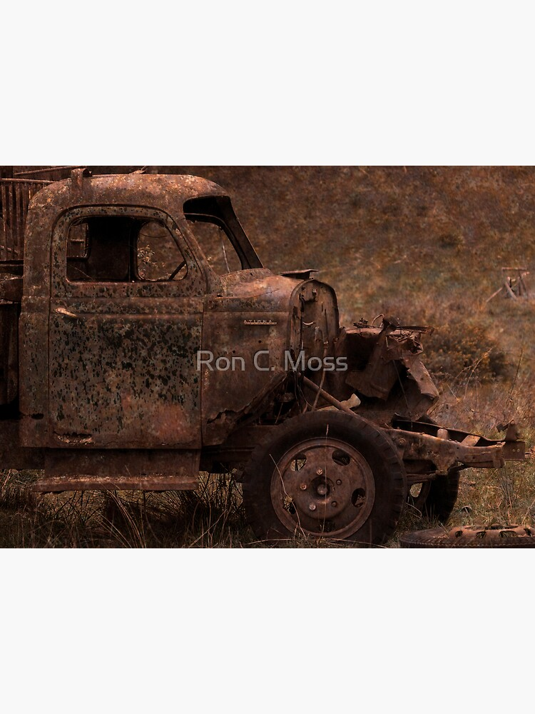 Rust and Rain by ronmoss