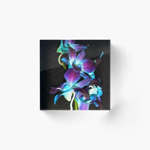 Blue Orchids Acrylic Block
