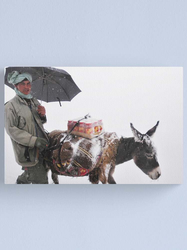 Alternate view of Life (Afghanistan) Canvas Print