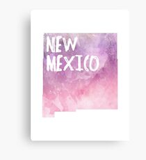 New Mexico - Pink &  Purple  Canvas Print