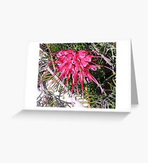 Grevillea! Greeting Card