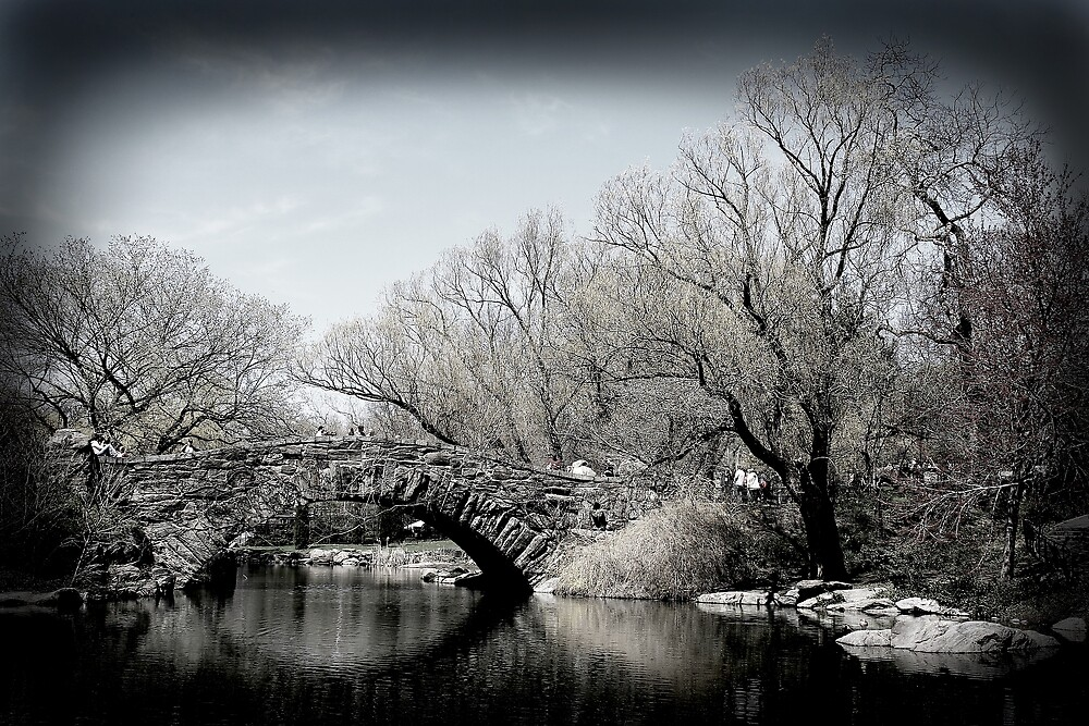 Bridge in Central Park by Kerry Duffy