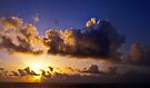 Dawn's Early Light by Angel Warda