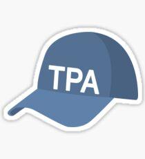 Tampa Baseball Cap Sticker