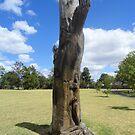 Tree Stump Sculpture,Rosedale,Victoria,Australia 2017 by muz2142