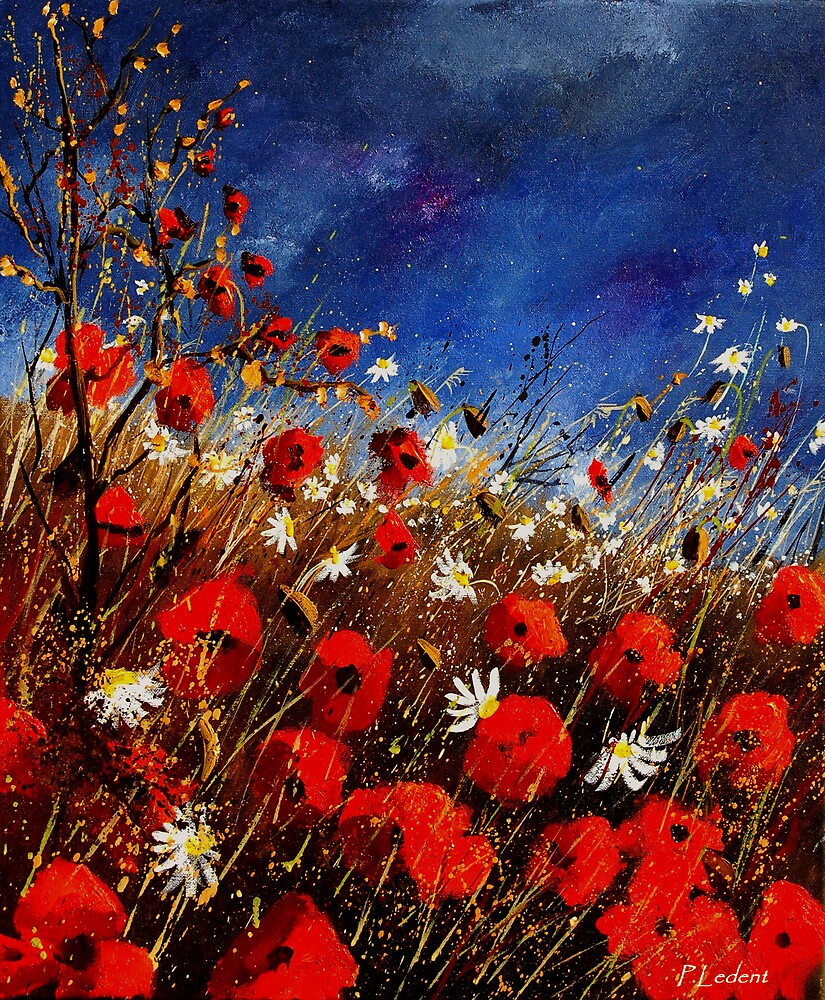 Red poppies against a stormy sky by calimero