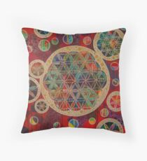 I am that, I am! 2-112 Throw Pillow
