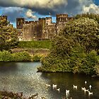 Caerphilly Castle Western Towers by IanWL