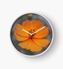 Lone Cosmos Clock