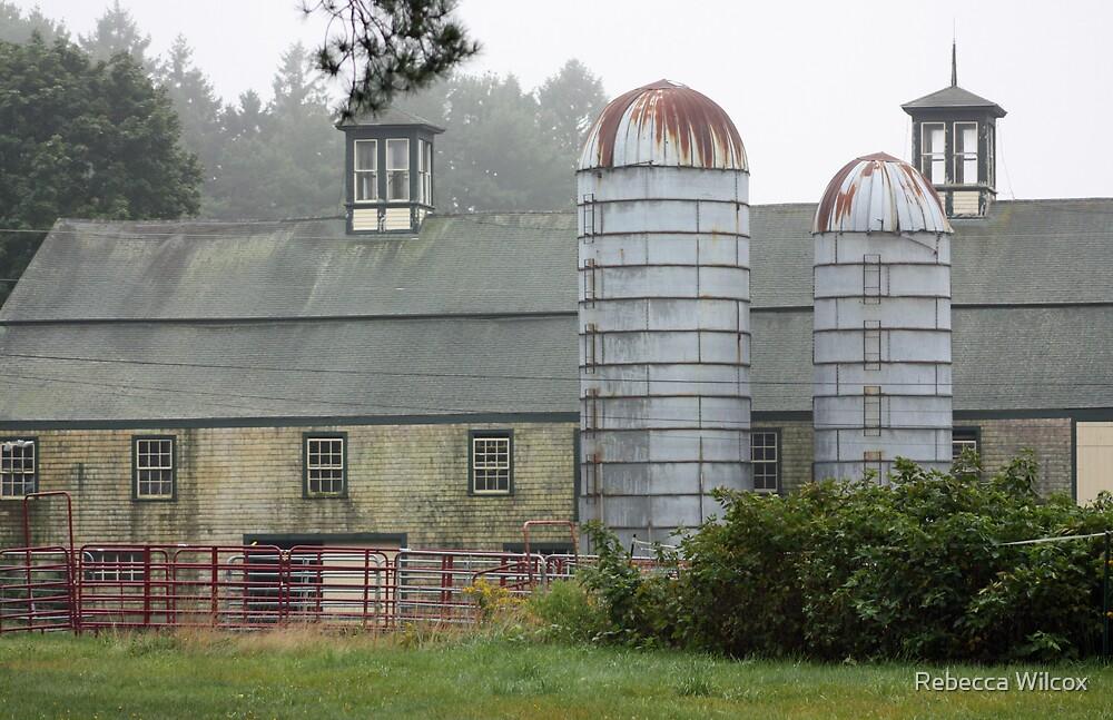 Maine Farm by Rebecca Brann