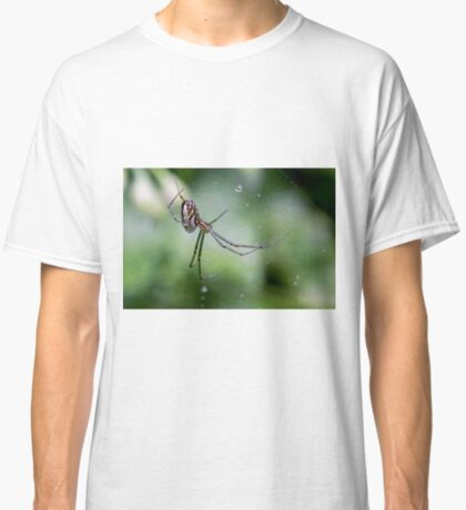 Spiders have jewels on their legs Classic T-Shirt